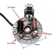 Apvijos statorius generatorius 110cc 125cc kinų krosinio