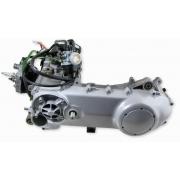 Piaggio 2T, 50-80cc.